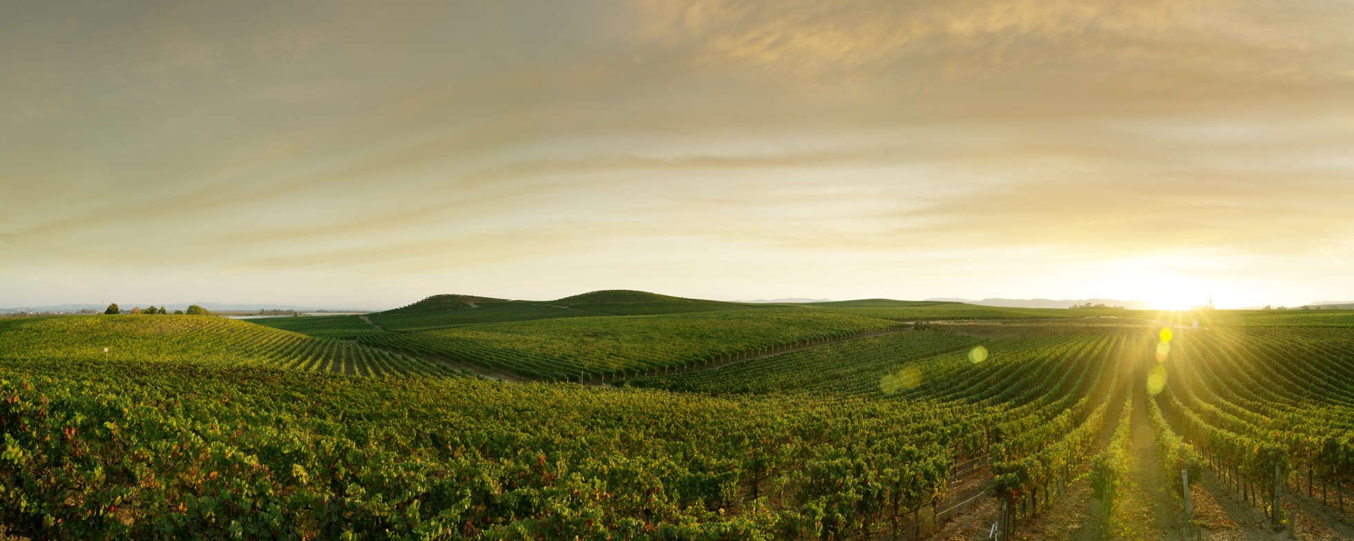 wine and beverage logistics in oakland california